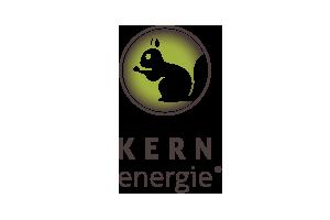 kernenergie_logo