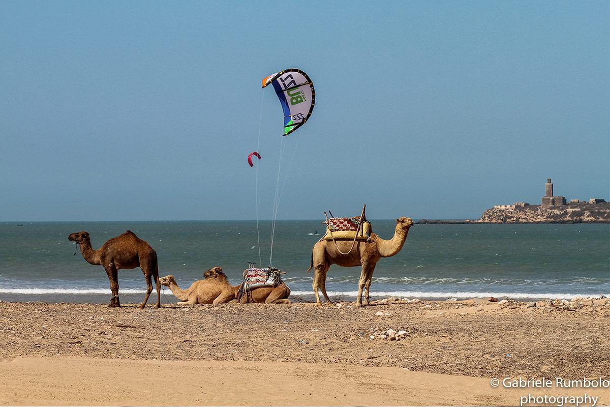 Kitesurfen im Juni mit KiteWorldWide in Essaouira, Marokko
