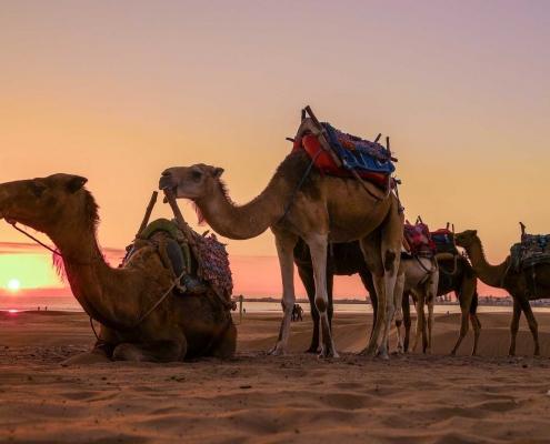 Kitesurfen-in-Marokko-mit-KiteWorldWide