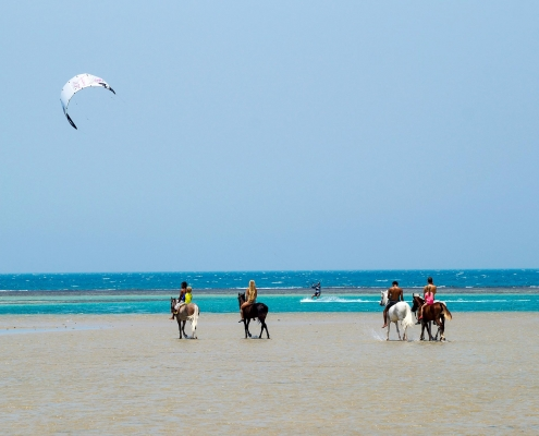 Zum Kitesurfen in den Kiteclub Seahorse Bay Aegypten